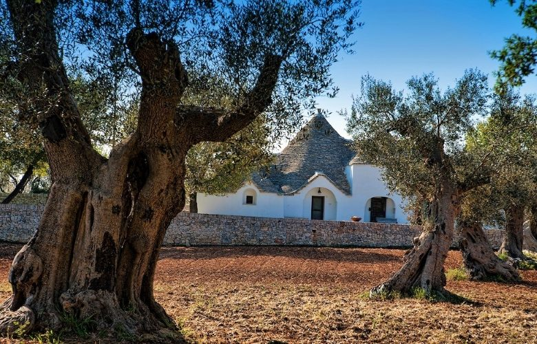 Puglia . . . The Next Tuscany? - Gallery Slide #27