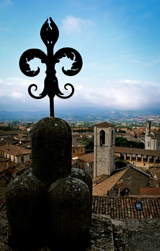 La Festa Dei Ceri (Race of the Candles) - Gallery Slide #38