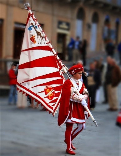 The Palio: Pride, Passion & Pandemonium - Gallery Slide #39